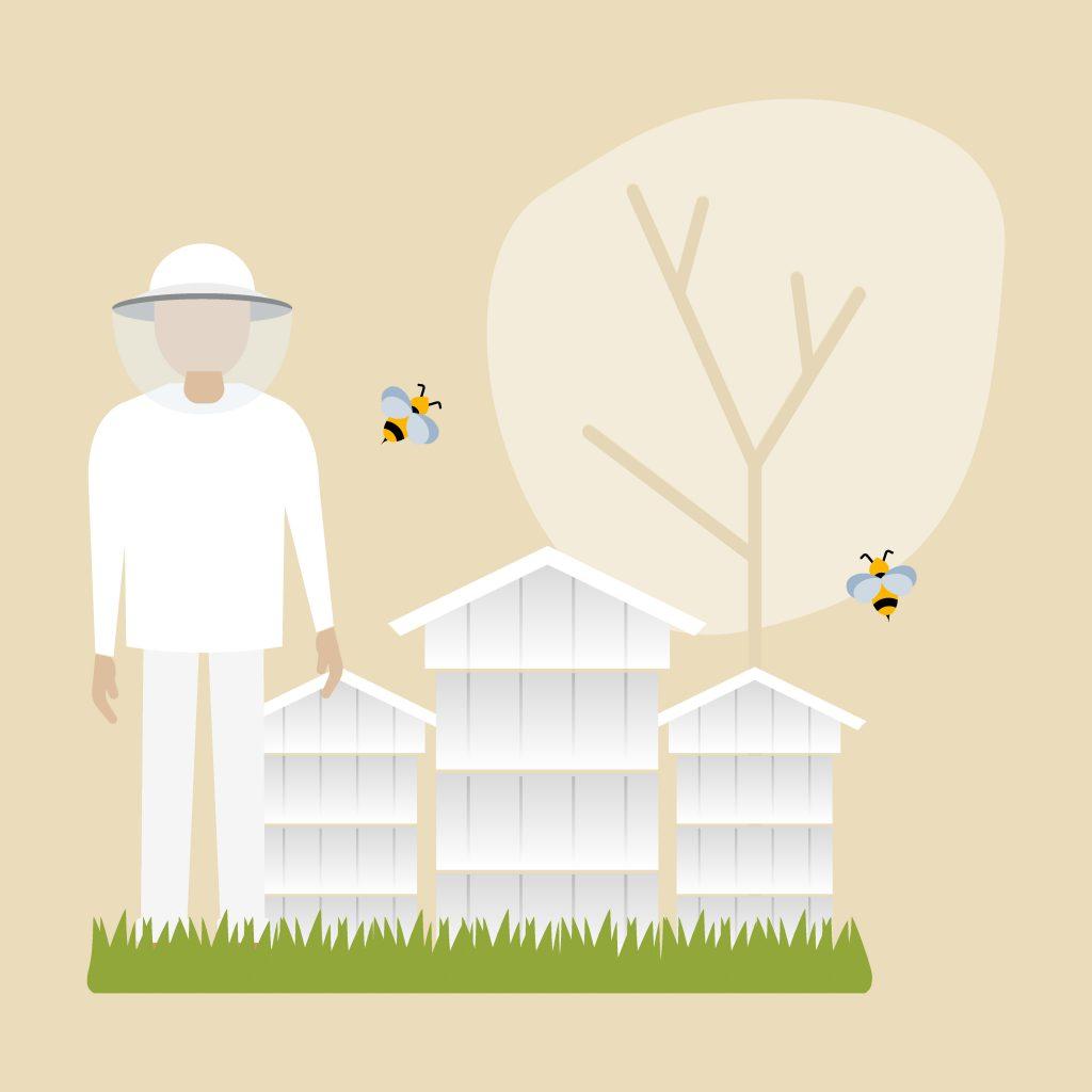 Advance Beekeeping icon