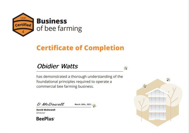 Business-cert-example